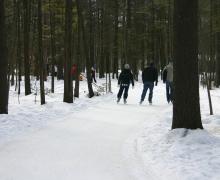 Sentier 1 km en forêt