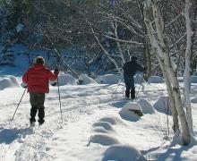 Centre de ski de fond La Randonnée