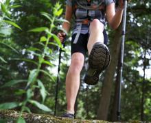 Réseaux de sentiers de Morin-Heights | Randonnée pédestre