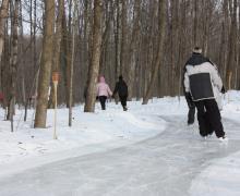 Parc régional éducatif bois de Belle-Rivière | Patinage