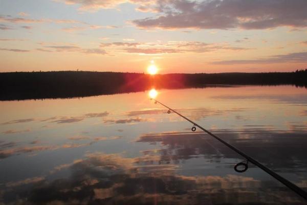 Chalet bord de l'eau, Yoga, nature, détente, pêche doré, pêche brochet