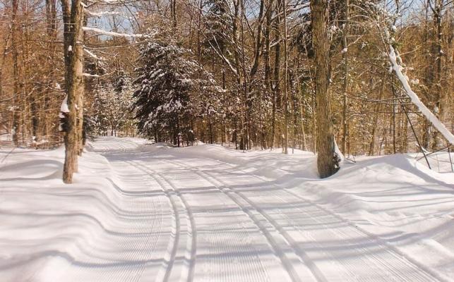 gai luron ski de fond