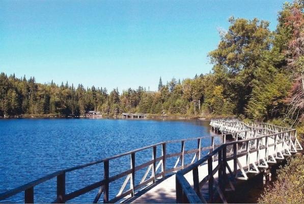 Passerelle en bois sur l'eau du sentier l'Aquatique.
