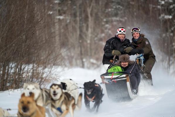 Dogsledding mont-tremblant