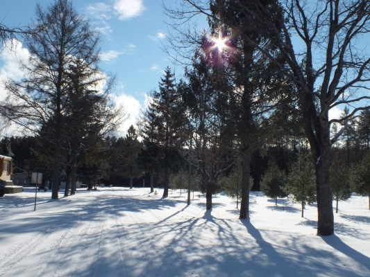 C'est l'hiver au Domaine Saint-Bernard !