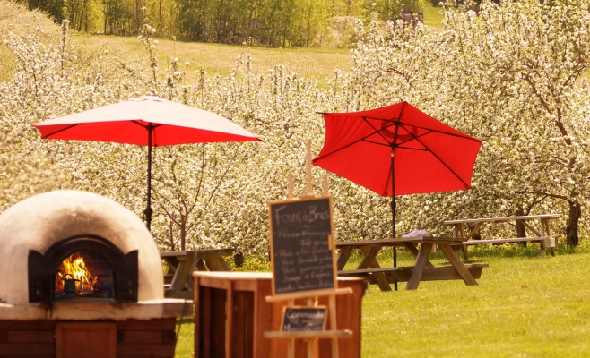 Cabane-a-pommes-terroir-Labonté-four-à-bois-Oka-Laurentides
