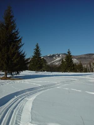 Piste de ski de fond au Domaine Saint-Bernard