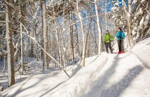 Snowshoeing mont-tremblant national park