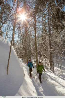 Parc national du Mont-Tremblant | Ski de randonnée et raquette
