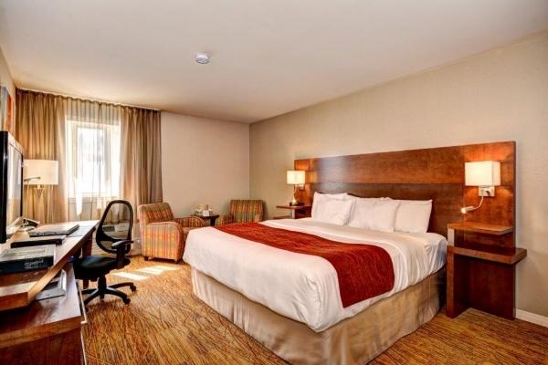 Chambre exécutive avec 1 très grand lit, café Keurig, bouteille d'eau et DVD gratuit