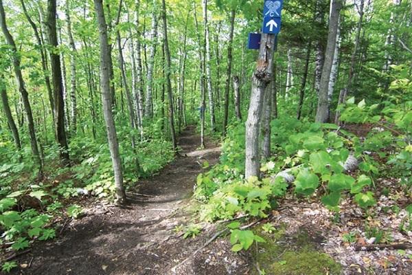parc régional Val-David-Val-Morin secteur Dufresne