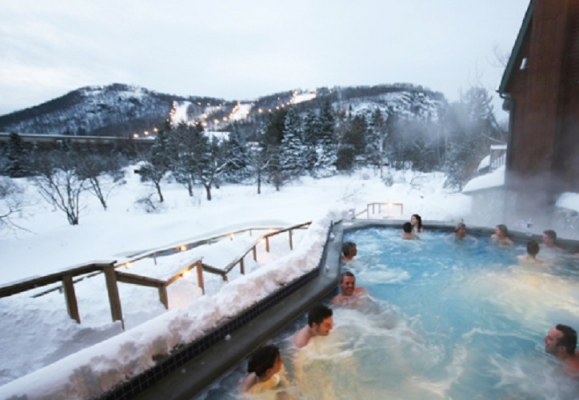 Hotels Near Polar Bear Club
