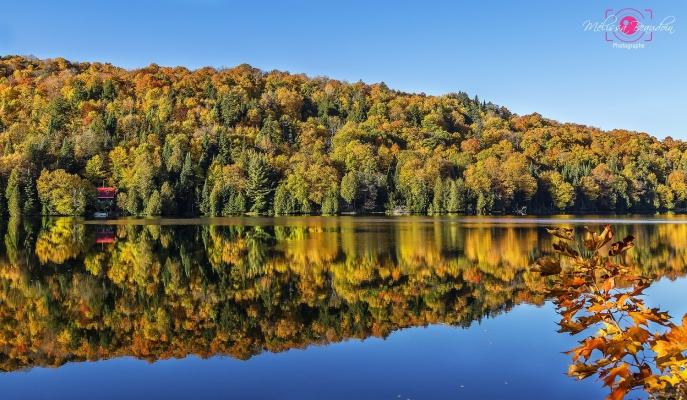 Lac et réflection automnale à Saint-Faustin-Lac-Carré