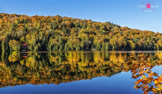 Fall colors reflecting on the lake in Saint-Faustin-Lac-Carré