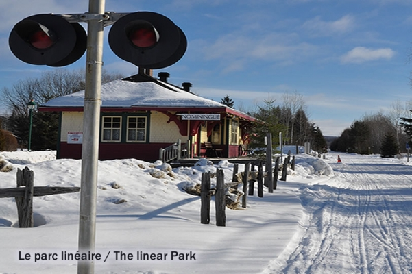 Linear Park, Nominingue